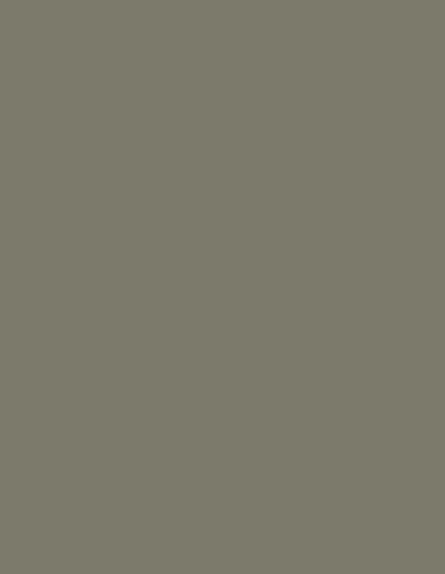 Moreno-SRPT_GR_0003-1