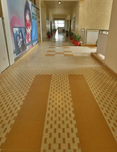 TAPPETTO TILES, DELHI PUBLIC SCHOOL, FARIDABAD